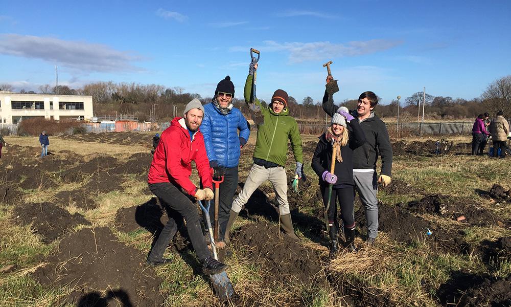 craigmillar meantime community planting